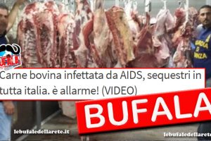 Bufala Carne bovina infettata da AIDS, sequestri in tutta italia. è allarme! (VIDEO)
